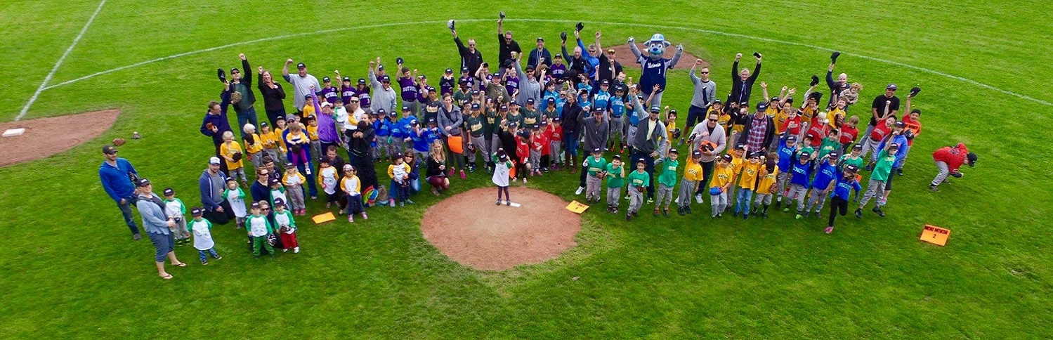 National Little League Teams of 2016!